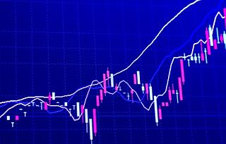 Digital solution transforms the way markets manage pricing information.jpg