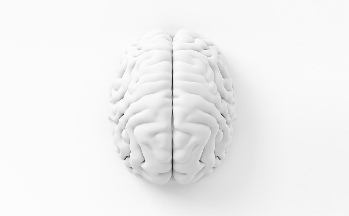 tribeca-bespoke-01-brain-mobile.png